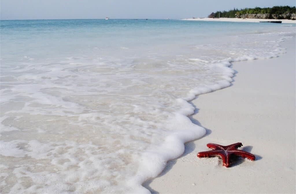 Weiße Sandstrände auf Sansibar!