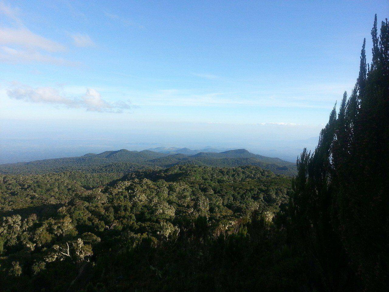 kilimanjaro-np